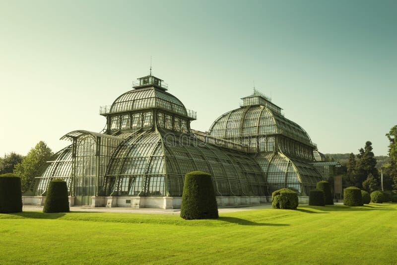 Casa de palma en el parque de palacio de Schonbrunn en Viena, Austria imagen de archivo libre de regalías