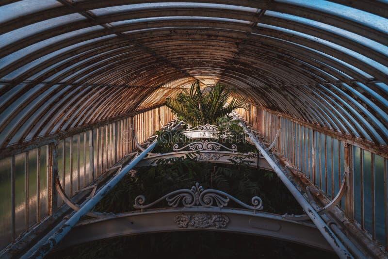 Casa de palma, jardins de Kew no inverno/outono fotografia de stock