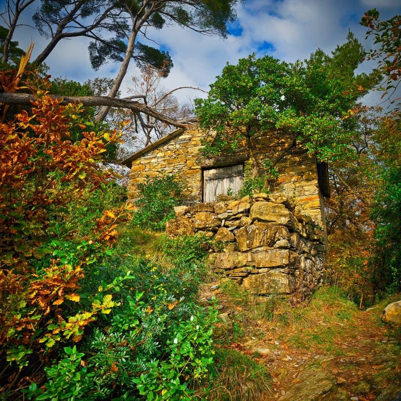 Casa de pedra pequena feericamente na floresta foto de stock