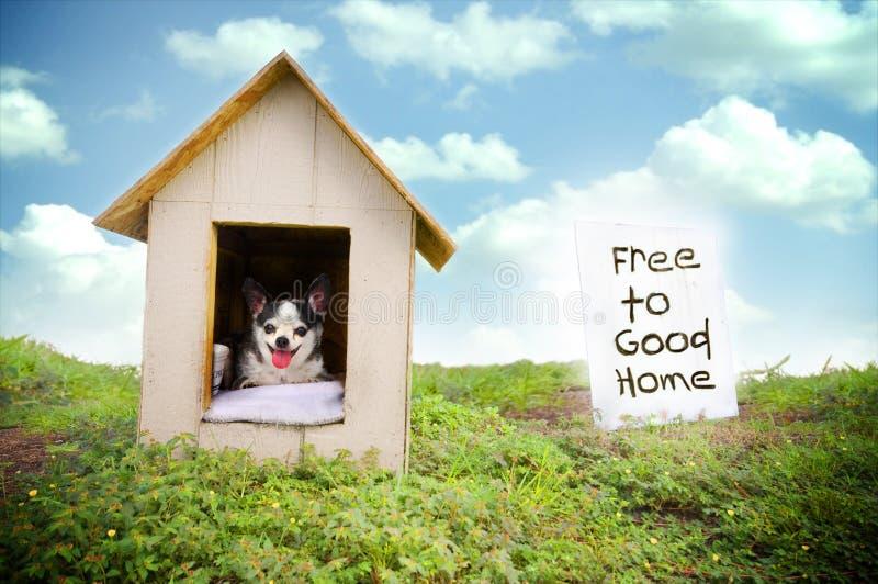 Casa de perro fotografía de archivo