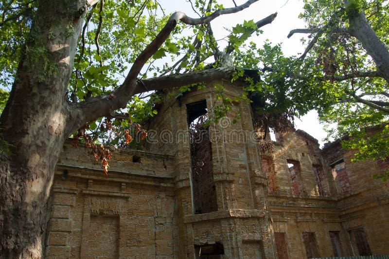 Casa de piedra destruida amarilla antigua vieja en la yarda con los árboles alrededor Pobreza y miseria, del sur, verano imagen de archivo
