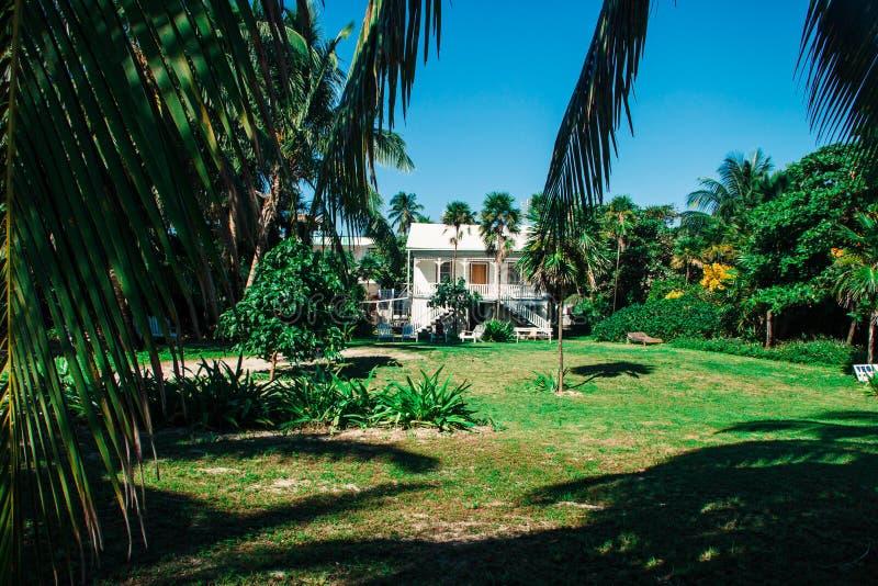 Casa de playa de madera blanca en palmeras en Sunny Day fotografía de archivo libre de regalías