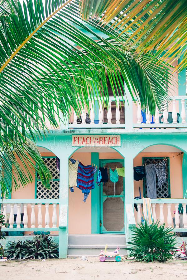Casa de playa de madera tropical verde en palmeras fotos de archivo libres de regalías