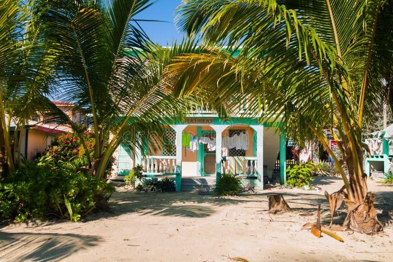 Casa de playa de madera verde en palmeras en Sandy Shore imagen de archivo libre de regalías