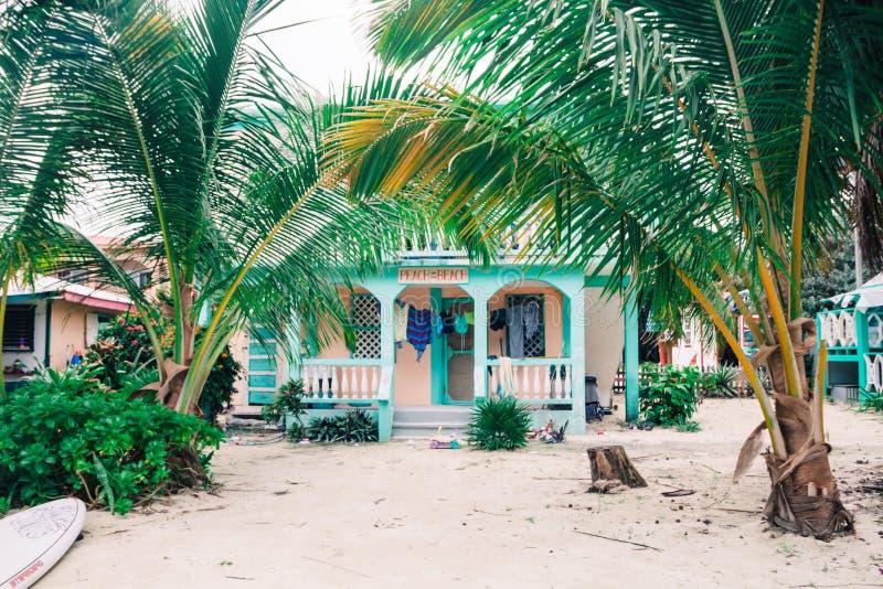 Casa de playa de madera verde en palmeras en Sandy Shore fotografía de archivo