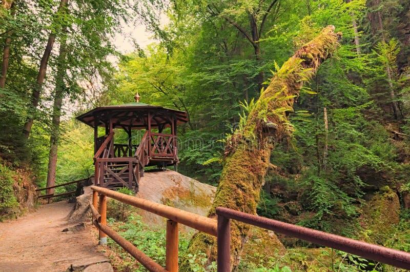 Casa de verão para turistas no rio de fluxo próximo verde de Kamenice da fuga de caminhada da floresta no parque nacional de Suíç fotografia de stock