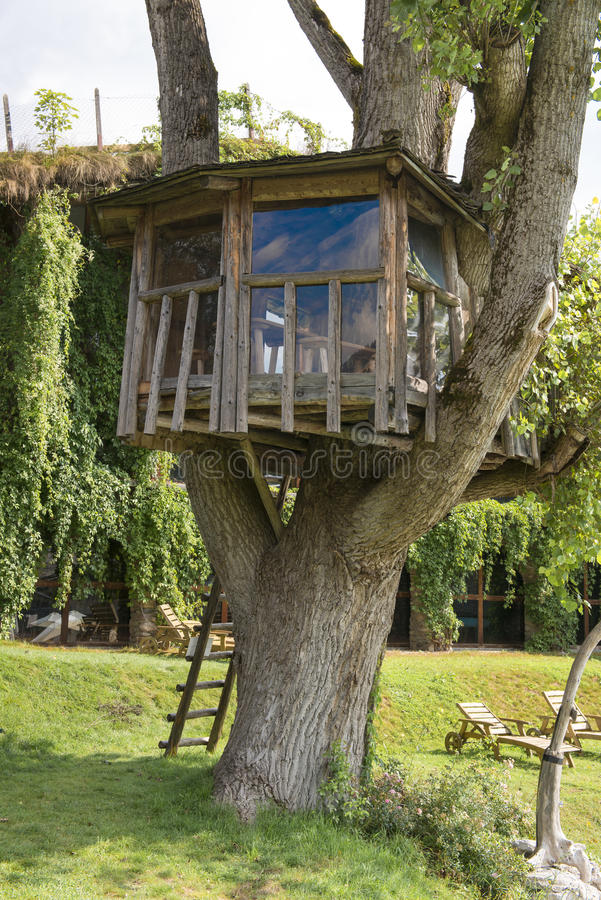 Casa del árbol fotografía de archivo libre de regalías
