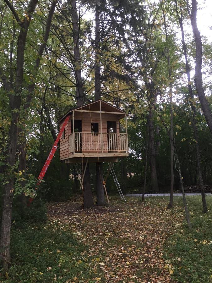 Casa del árbol fotos de archivo