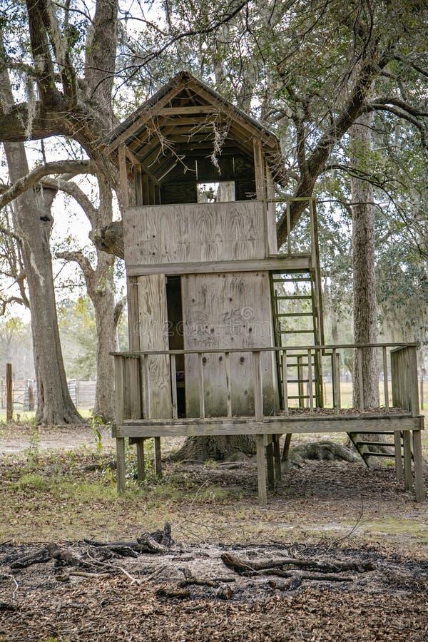 Casa del árbol foto de archivo