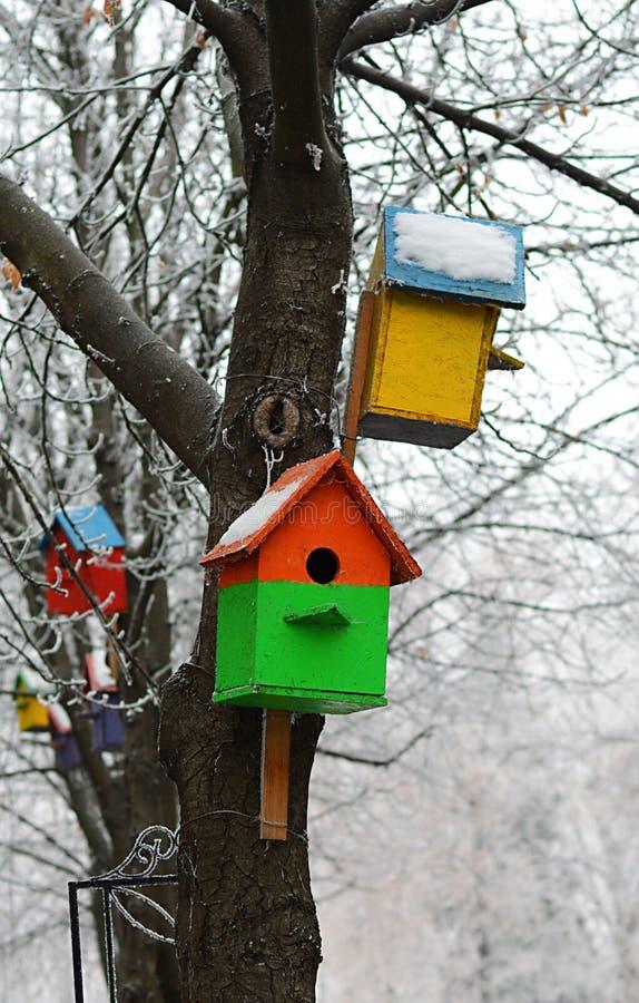 Casa del pájaro en invierno foto de archivo