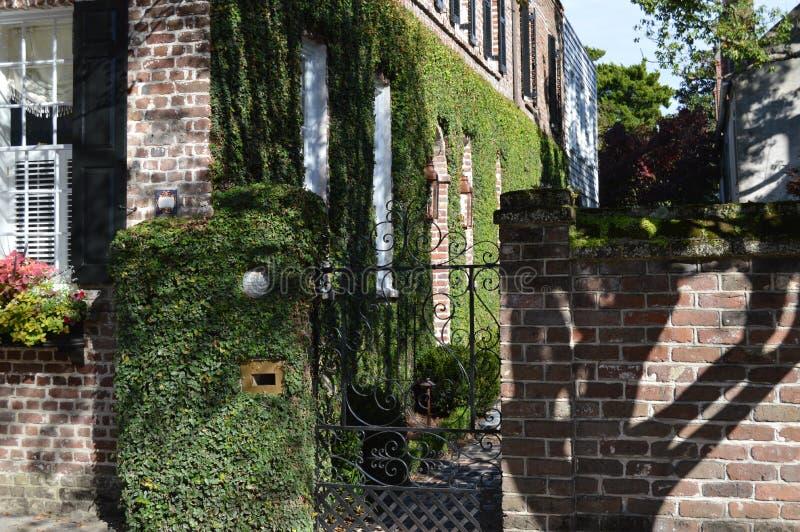 Casa del sud di stile con l'edera a Charleston, Sc immagine stock libera da diritti