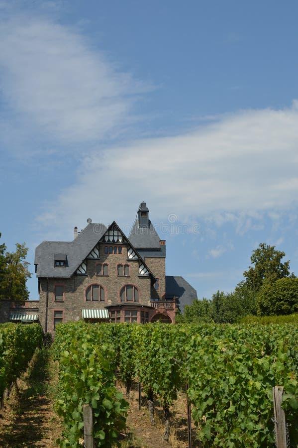 Casa del viñedo imagen de archivo