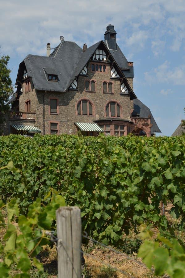 Casa del viñedo imagen de archivo libre de regalías