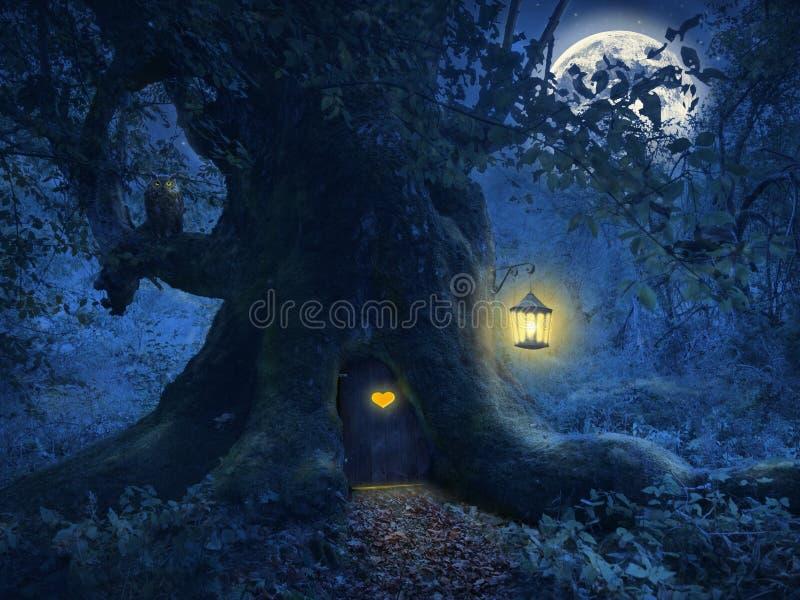 Casa dell'albero nella foresta magica fotografia stock libera da diritti