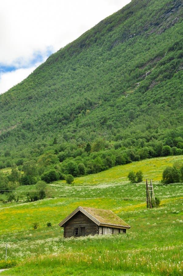 Casa dell'erba del lato del paese della Norvegia fotografie stock libere da diritti