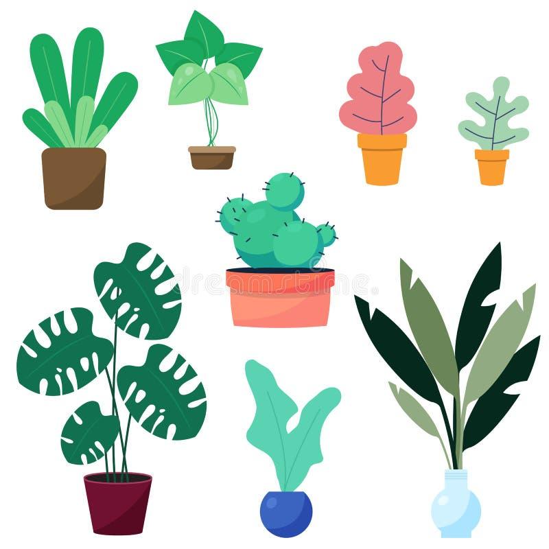 Casa dell'interno, piante da appartamento moderne di stile dell'ufficio Piante di colore verde in vaso royalty illustrazione gratis