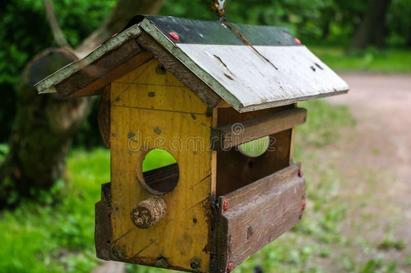Casa dell'uccello di Yello in un giardino fertile immagini stock libere da diritti