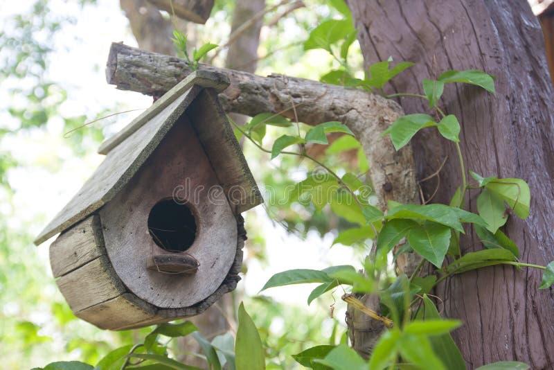 Casa dell'uccello sull'albero immagini stock
