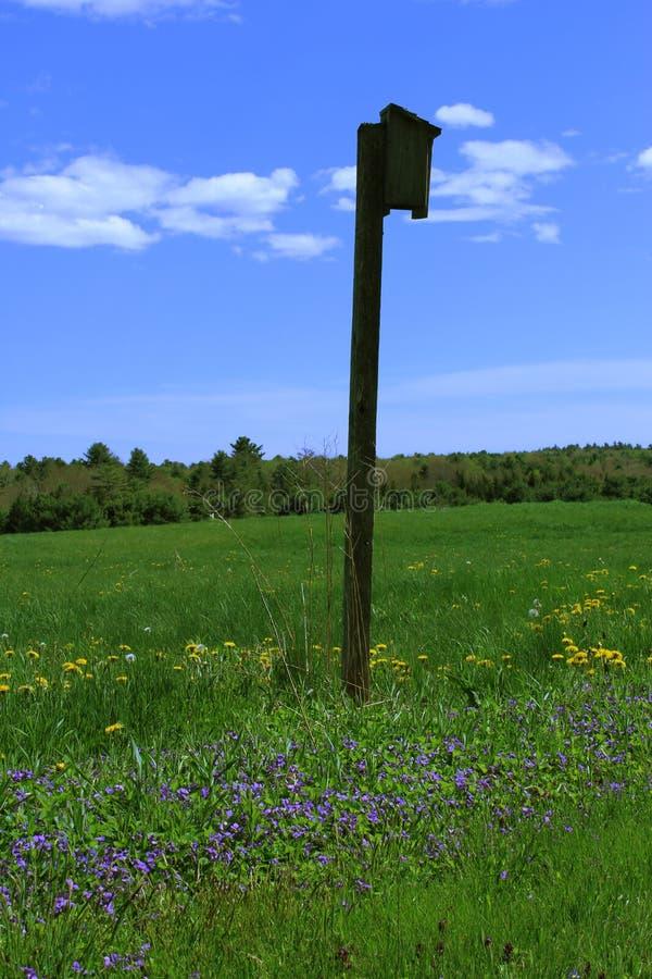 Casa dell'uccello in un campo immagine stock libera da diritti