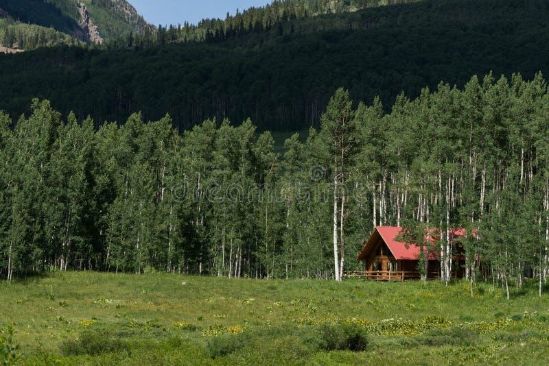 Casa della cabina di ceppo nella foresta della montagna fotografia stock