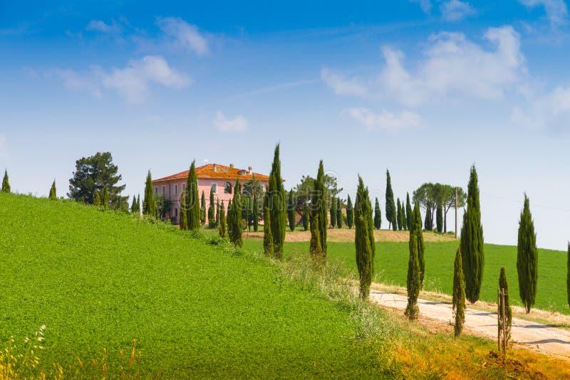 Casa di campagna con il cipresso in toscana italia for Casa di campagna toscana