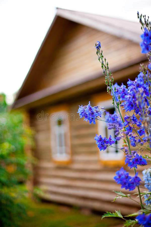 Casa di campagna di legno con il giardino fronte immagine stock libera da diritti