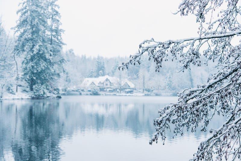 Casa di inverno in foresta nevosa sul lago fotografie stock