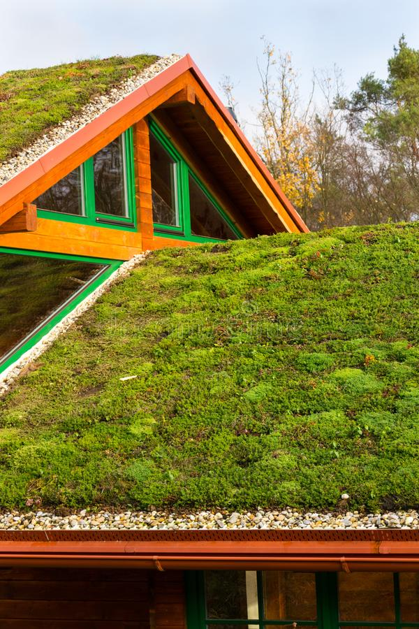 Casa Di Legno Con L'esteso Tetto Vivente Verde Coperto Di ...
