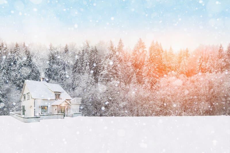 Casa di legno con neve sul tetto nei precedenti della foresta fotografie stock libere da diritti