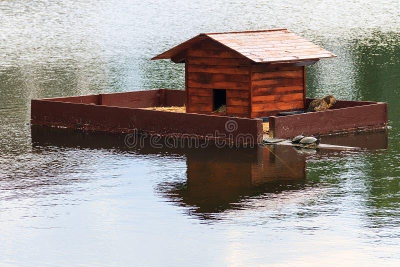 Casa di legno per le tartarughe e le anatre su un lago nel parco della citt? fotografia stock libera da diritti