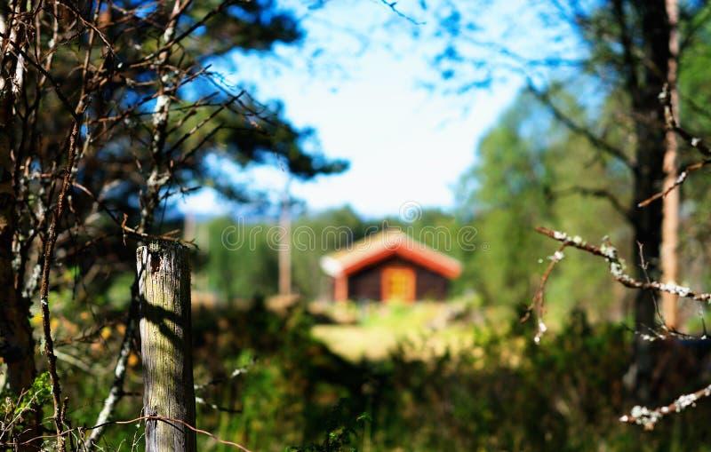 Casa distante da exploração agrícola de Noruega no fundo das madeiras imagens de stock
