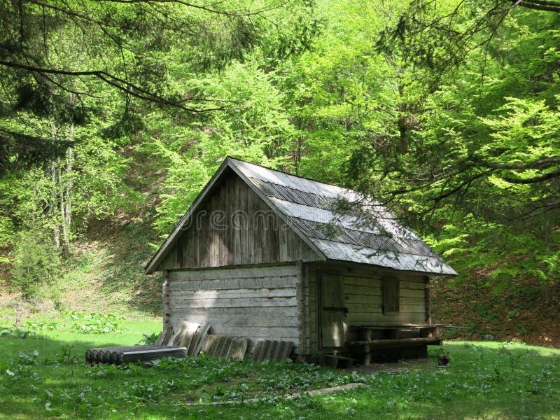 Casa do Forester imagens de stock