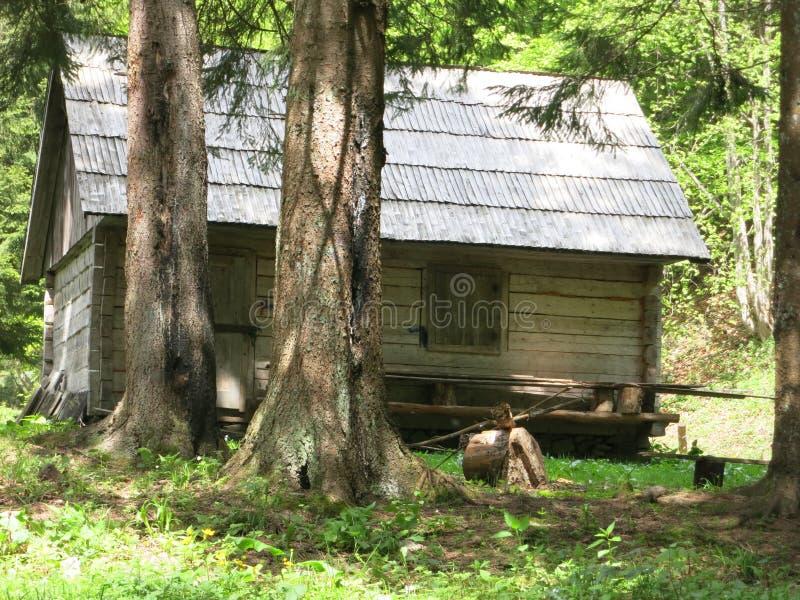 Casa do Forester fotos de stock
