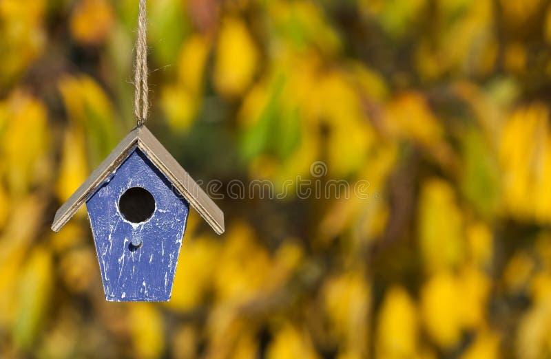 Casa do pássaro em Autumn Fall Sunshine & nas folhas douradas fotos de stock royalty free