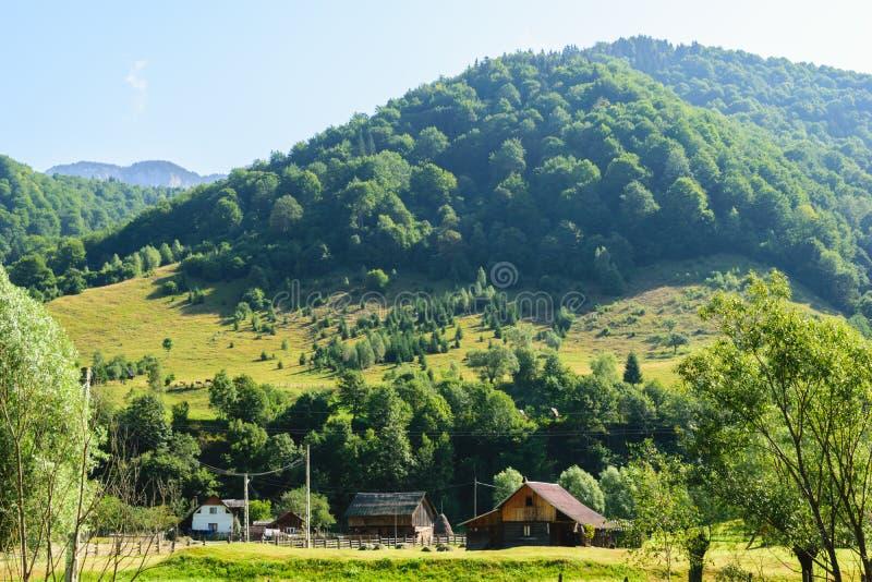 Casa e celeiros tradicionais velhos na região de Rucar, Romênia montes verdes cobertos na floresta verde no fundo imagens de stock royalty free