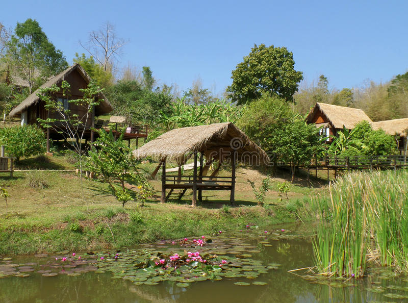Casa e pavilhão cobridos com sapê tailandeses tradicionais do telhado em torno de Lotus Pond foto de stock royalty free