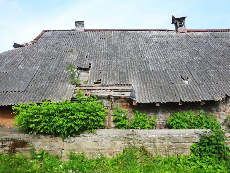 Casa e plantas arruinadas velhas, Lituânia foto de stock royalty free