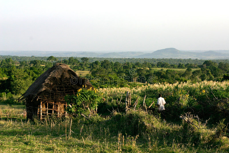 Casa Em Kenya Imagem de Stock