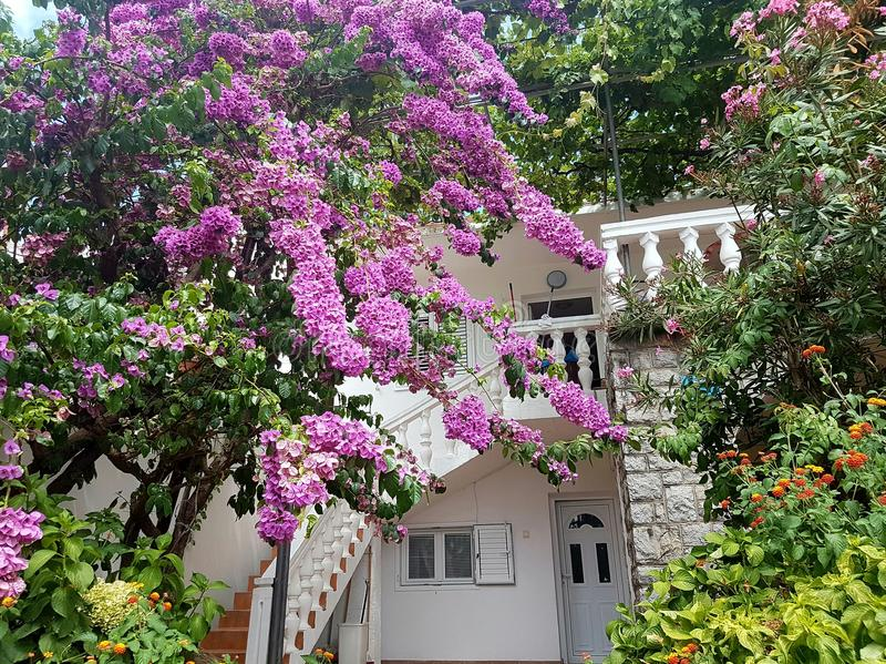 A casa em Montenegro fotos de stock royalty free