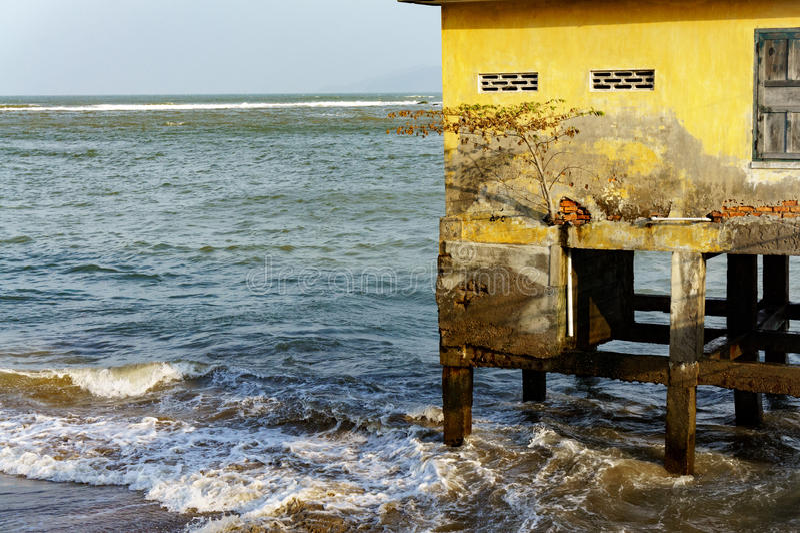 Casa em pernas de pau no mar aberto árvore solitário crescida no imagens de stock royalty free