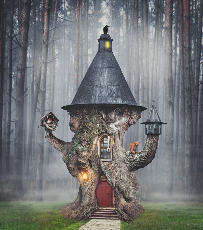 Casa en el árbol de hadas del misterio en bosque de la fantasía fotos de archivo