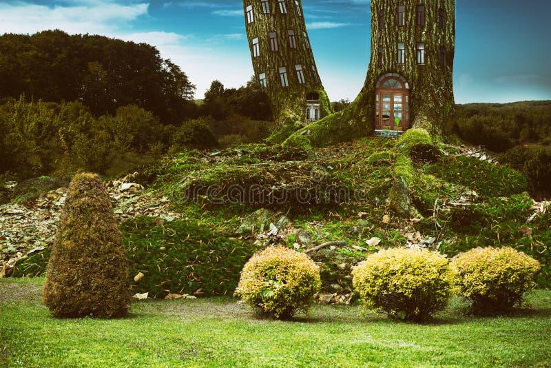 Casa en el árbol de la vivienda de la fantasía en bosque profundo imagen de archivo libre de regalías