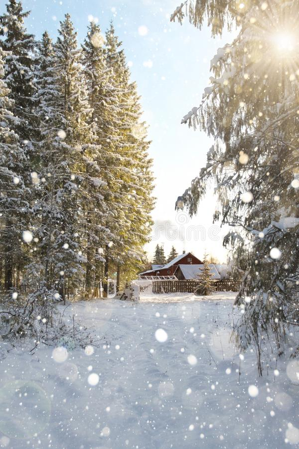 Casa en el borde del bosque imágenes de archivo libres de regalías