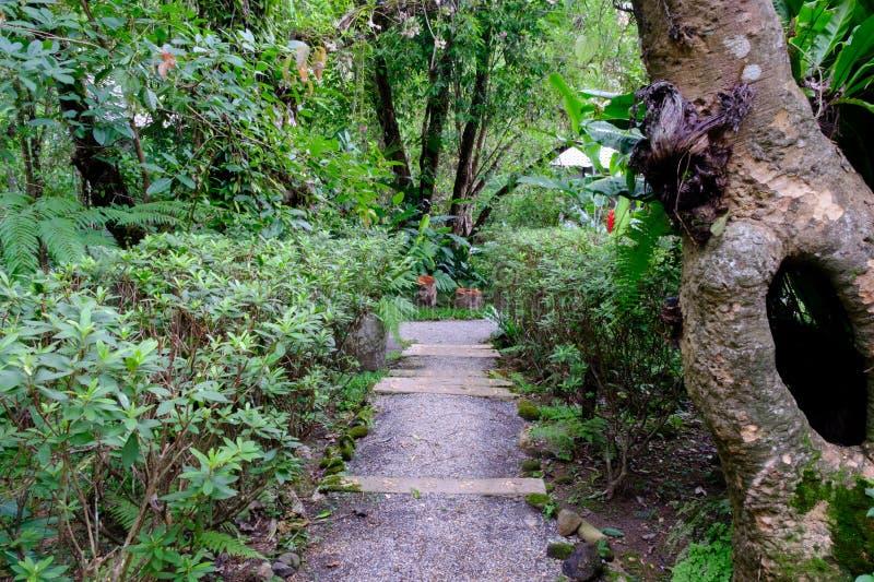 Casa en jardín del bosque fotos de archivo