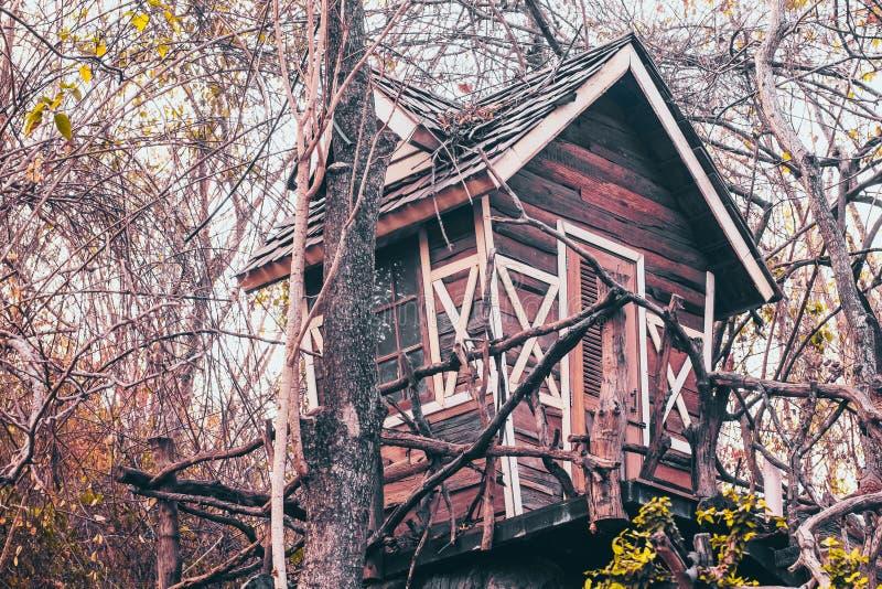 Casa encantada en fondo de la idea del concepto del misterio del lugar del abandono del árbol foto de archivo libre de regalías