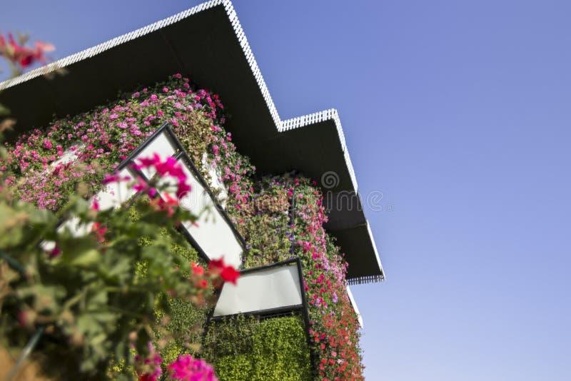 Casa estiva di miracolo del Dubai coperta in fiori rosa fotografie stock