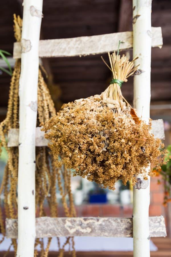 A casa feita secou ramalhetes da flor do jardim na escada do vidoeiro imagens de stock
