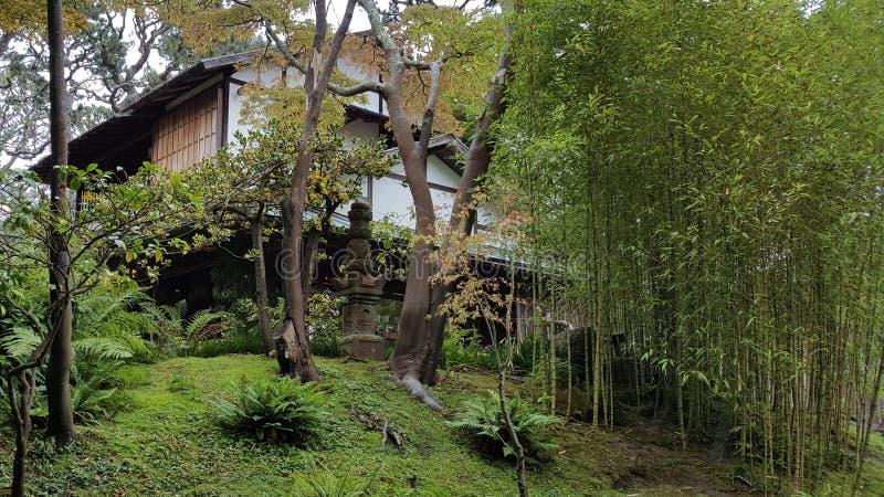 Alberi giapponesi del giardino immagine stock immagine for Casa giapponese