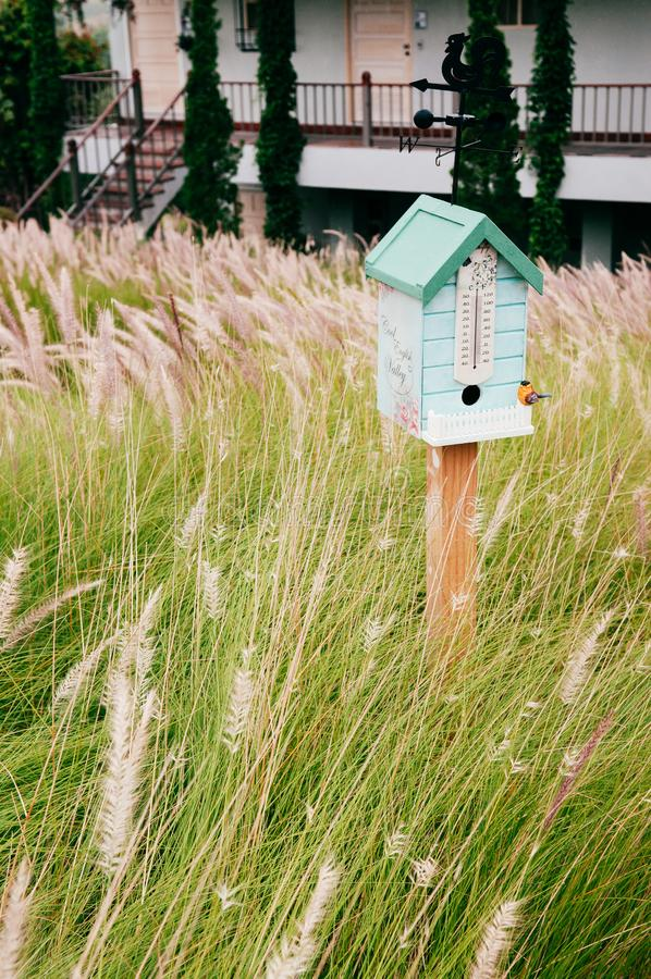 Casa inglesa do pássaro do país do vintage no campo de flores da grama fotografia de stock royalty free