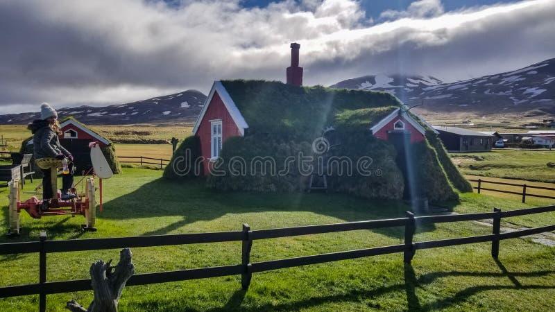 Casa islandese immagini stock